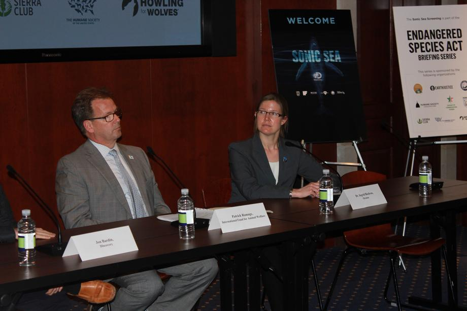 Panelist discuss the impacts of oceanic noise pollution on marine species